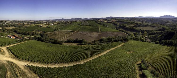 foto-panoramica-vigneweb
